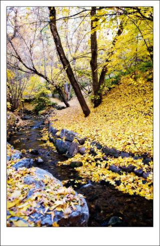 Glen-stream