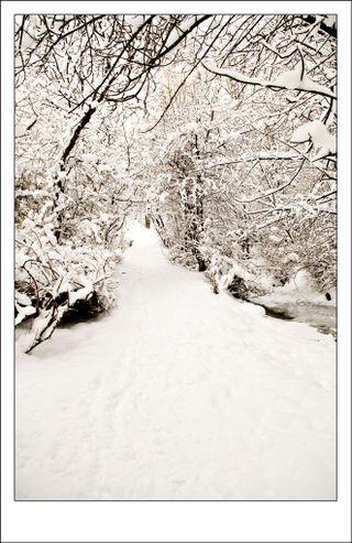 Glen-in-snow